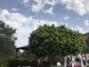 Hotel El Paso | Piscina